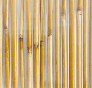 Komôrkový polykarbonát výplň bambus - 3/4